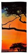 African Skies Beach Towel