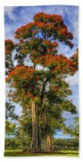 African Tulip At Liliuokalani Park Beach Towel