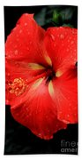 Georgia Red Hibiscus After A Rain Greensboro Georgia Art Beach Towel