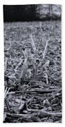 After The Harvest Beach Towel