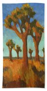 Afternoon Light At Joshua Tree Beach Towel