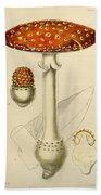 Agaricus Mushroom By Sowerby Beach Towel by Philip Ralley