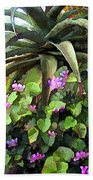 Agave And African Violets Beach Towel