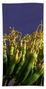 Agave Bloom Beach Towel