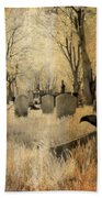 Aged Infrared Beach Towel