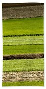 Agriculture Layers Fields And Meadows Beach Towel