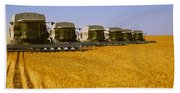 Agriculture - Six Gleaner Combines Beach Towel