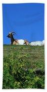 Al Johnsons Resturant Goats Beach Towel