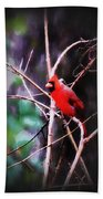 Alabama Rain - Cardinal Beach Towel