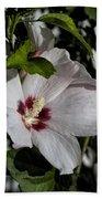 Alabama Wildflower -  Woolly Rose Mallow Beach Towel