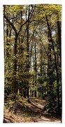 Alabama Woodlands In Spring 2013 Beach Towel