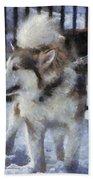 Alaskan Malamute Photo Art 09 Beach Towel