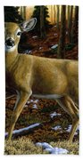 Whitetail Deer - Alerted Beach Sheet by Crista Forest