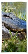Alligator Smiling Beach Towel