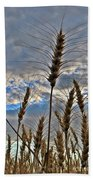 All About Wheat Beach Towel