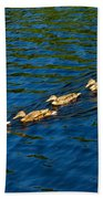 All Ducks Lined Up Beach Towel