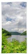 Allegheny Reservoir Beach Towel