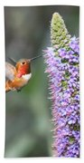 Allen Hummingbird On Flower Beach Towel