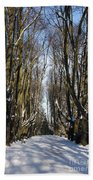 Alley In The Snow Beach Towel