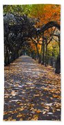 Alley With Falling Leaves In Fall Park Beach Towel