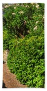 Alley With Green Plants Beach Towel