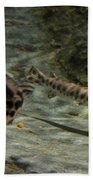Alligator Gars Beach Towel