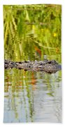Alligator Reflection Beach Towel by Al Powell Photography USA