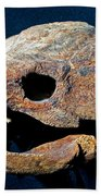 Alligator Snapping Turtle Beach Towel