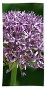 Allium Beach Towel