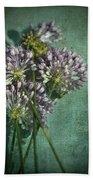 Allium Wildflower With Grunge Textures Beach Towel