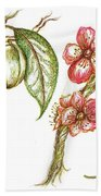 Almond With Flowers Beach Towel by Teresa White