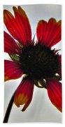 Alone Flower I Mlo Beach Towel