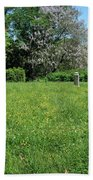 Alone In A Field Of Buttercups Beach Towel
