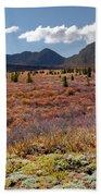 Alpine Landscape In Fall Beach Towel