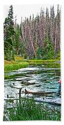 Alpine Pond On Alpine Pond Trail In Cedar Breaks National Monument-utah Beach Towel