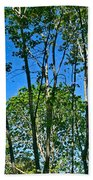 Alternate Reality - Reflected View Of The Forest From A Pond In Garland Ranch Park In Carmel Valley. Beach Towel