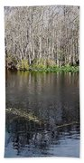 Reflections - On The - Silver River Beach Towel