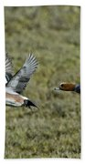 American & Eurasian Wigeons Beach Towel