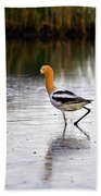 American Avocet Beach Towel