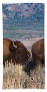 American Bison Trio Beach Towel