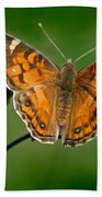 American Lady Butterfly With Green Background Beach Towel