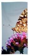 American Painted Lady Butterfly Blue Background Beach Towel