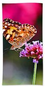 American Painted Lady Butterfly Pink Beach Towel