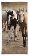 American Quarter Horse Herd Beach Towel