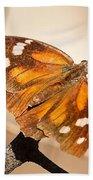 American Snout Butterfly Beach Towel