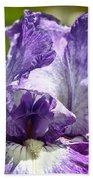 Amethyst Iris Beach Towel