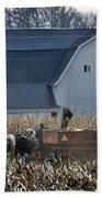 Amish Corn Picking And 1919 Barn Beach Towel