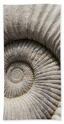 Ammonites Fossil Shell Beach Towel
