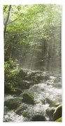 Ammonoosuc Ravine Trail - White Mountains Nh Usa Beach Towel