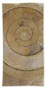 An Ancient Ammonite Pattern Vi Beach Towel